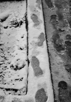 empreinte_neige