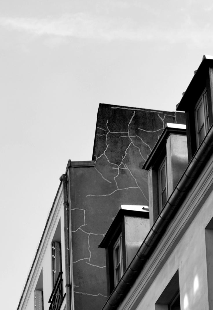 fissure_web