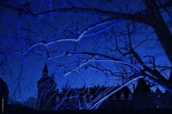 songe_nuit_bleue2_web