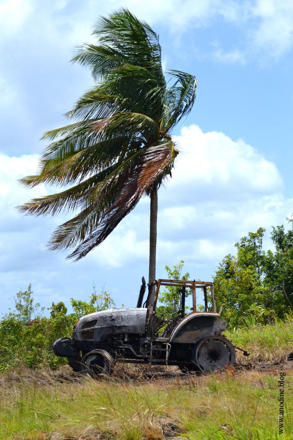 tracteur_gua_web